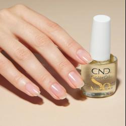 Essentials CND